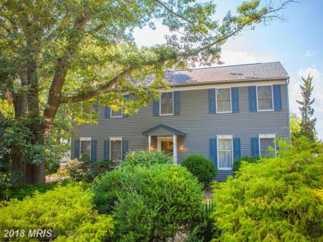 128 Royston Shores Road, Chestertown, MD 21620 (#QA10303295) :: Maryland Residential Team