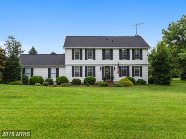 104 Dove Lane, Centreville, MD 21617 (#QA10307807) :: The Bob & Ronna Group
