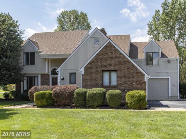 39 Greenwood Shoals Shoals, Grasonville, MD 21638 (#QA10321954) :: The Riffle Group of Keller Williams Select Realtors