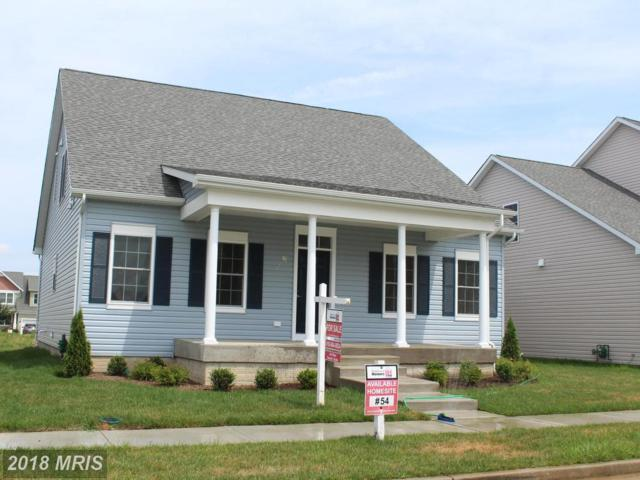 128 Allison Jane Drive, Stevensville, MD 21666 (#QA10325183) :: ExecuHome Realty
