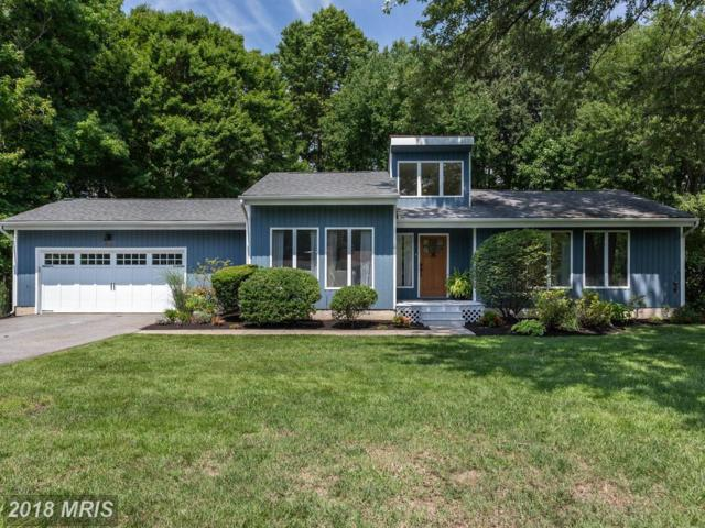 202 Queens Colony High Road, Stevensville, MD 21666 (#QA10325562) :: The Riffle Group of Keller Williams Select Realtors