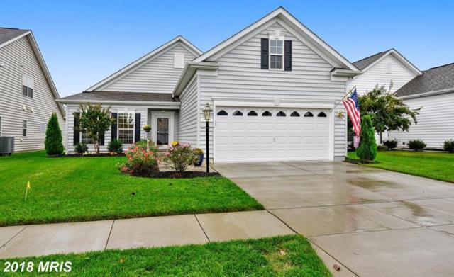 146 Concerto Avenue, Centreville, MD 21617 (#QA10350199) :: Keller Williams Pat Hiban Real Estate Group
