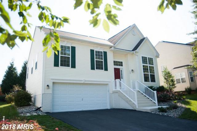 122 Cypress Street, Centreville, MD 21617 (#QA10351748) :: Maryland Residential Team