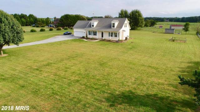 744 Murphy Road, Centreville, MD 21617 (#QA10352272) :: Maryland Residential Team