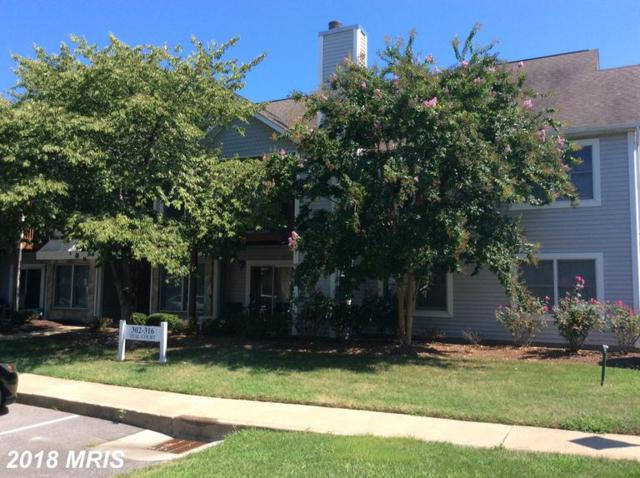 316 Teal Court #H, Chester, MD 21619 (#QA10353388) :: Maryland Residential Team