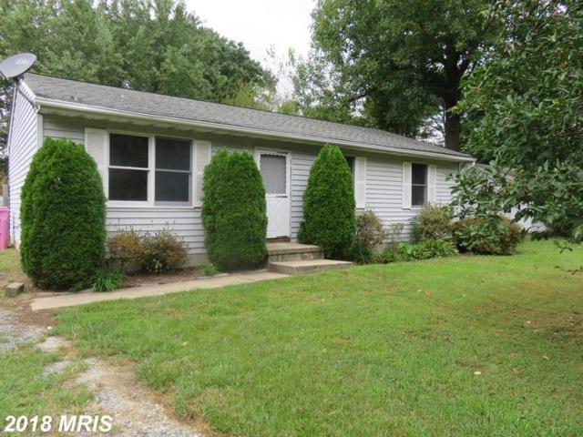 610 Romancoke Road, Stevensville, MD 21666 (#QA10354434) :: The Maryland Group of Long & Foster