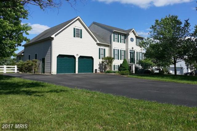 236 Three Creeks Drive, Centreville, MD 21617 (#QA9936360) :: LoCoMusings