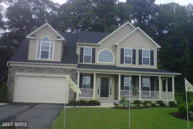 301-NORTH Brook Drive, Centreville, MD 21617 (#QA9940861) :: LoCoMusings