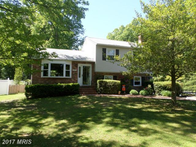 341 Larch Place, Stevensville, MD 21666 (#QA9948045) :: LoCoMusings