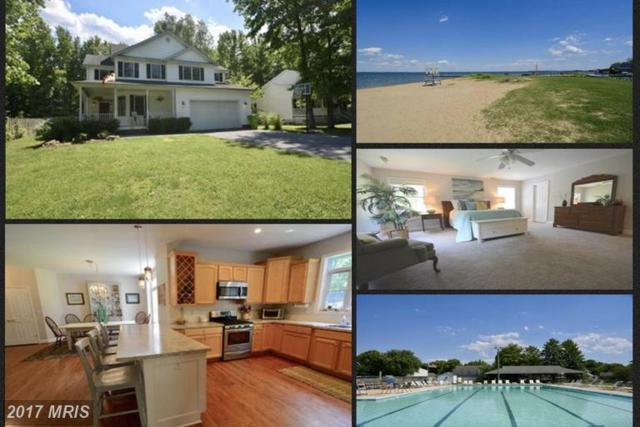 207 Larch Place, Stevensville, MD 21666 (#QA9966376) :: LoCoMusings