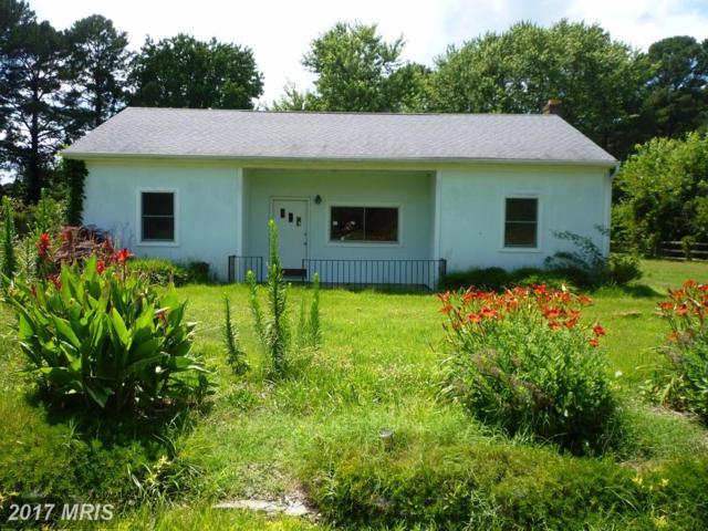 134 Allegany Road, Stevensville, MD 21666 (#QA9996089) :: Pearson Smith Realty