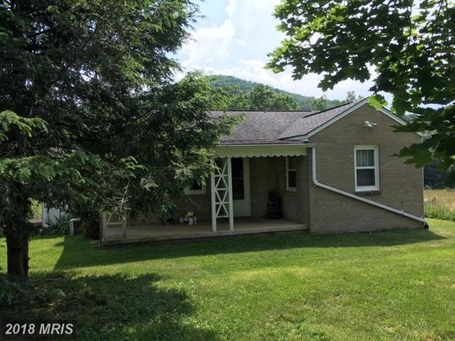 19074 Mount Pleasant Road, Elkton, VA 22827 (#RO10278745) :: RE/MAX Cornerstone Realty