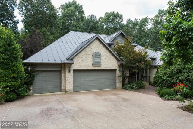 536 F Street, Elkton, VA 22827 (#RO9857680) :: Pearson Smith Realty