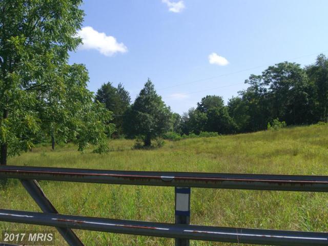 13089 Crest Hill Road, Flint Hill, VA 22627 (#RP10015418) :: LoCoMusings