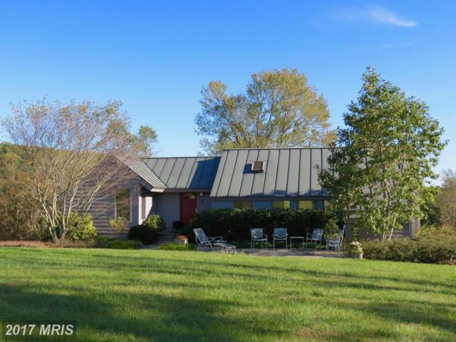 230 Walnut Grove Lane, Washington, VA 22747 (#RP10087220) :: Pearson Smith Realty