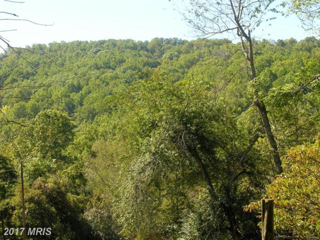 Gid Brown Hollow Road, Washington, VA 22747 (#RP10118563) :: MidAtlantic Real Estate