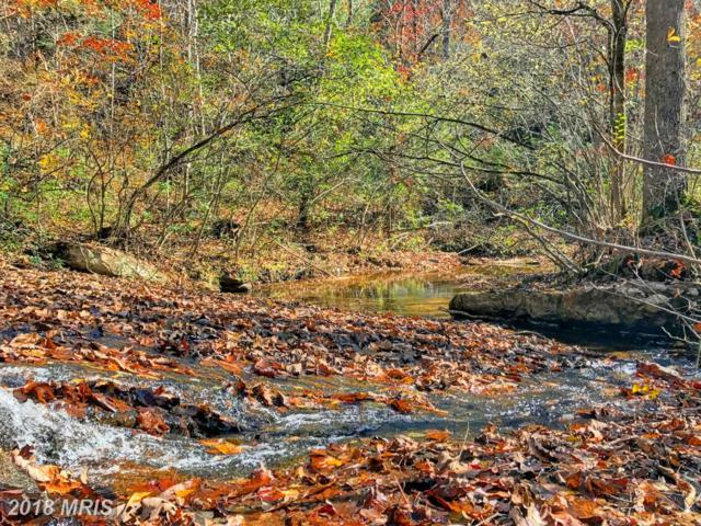 Turkey Ridge Road, Castleton, VA 22716 (#RP10323874) :: The Maryland Group of Long & Foster
