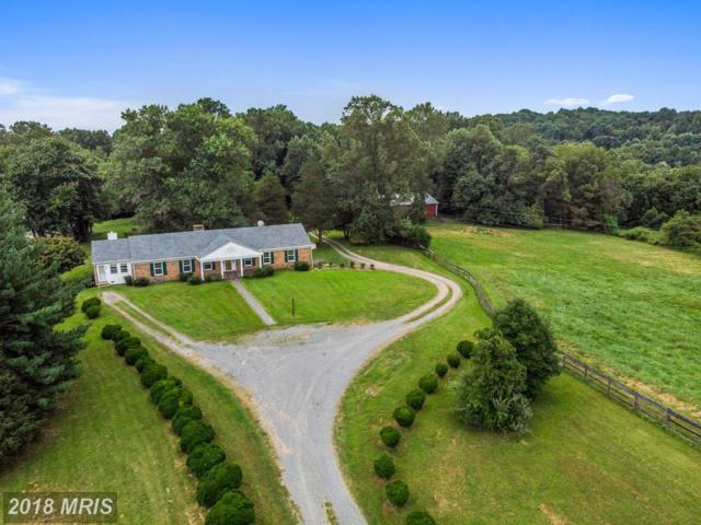14564 Lee Highway, Amissville, VA 20106 (#RP10335089) :: RE/MAX Executives