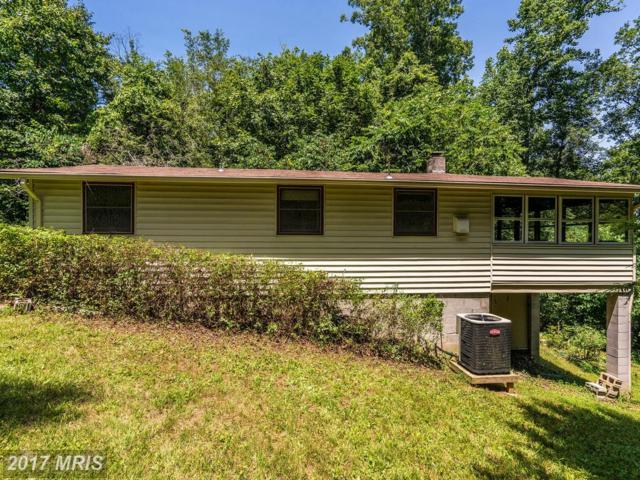 509 Pine Circle, Amissville, VA 20106 (#RP9989681) :: Pearson Smith Realty