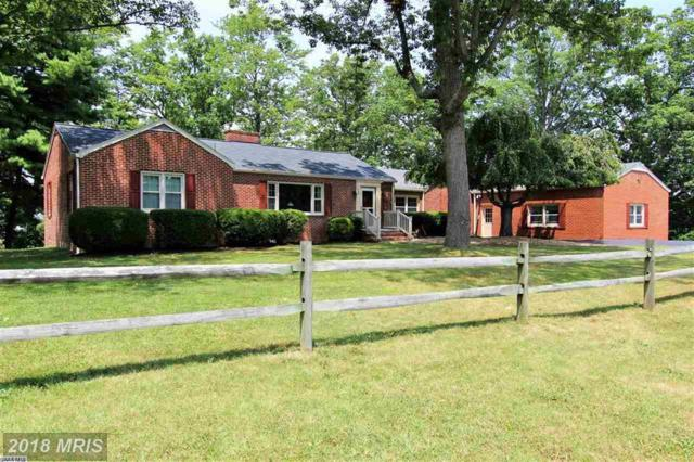 736 Hillcrest Dr, Staunton, VA 24401 (#SC10285010) :: Keller Williams Pat Hiban Real Estate Group