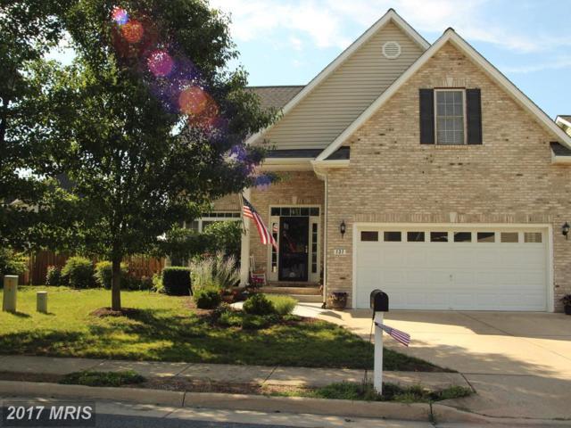 131 Potters Circle, Strasburg, VA 22657 (#SH10001413) :: Pearson Smith Realty