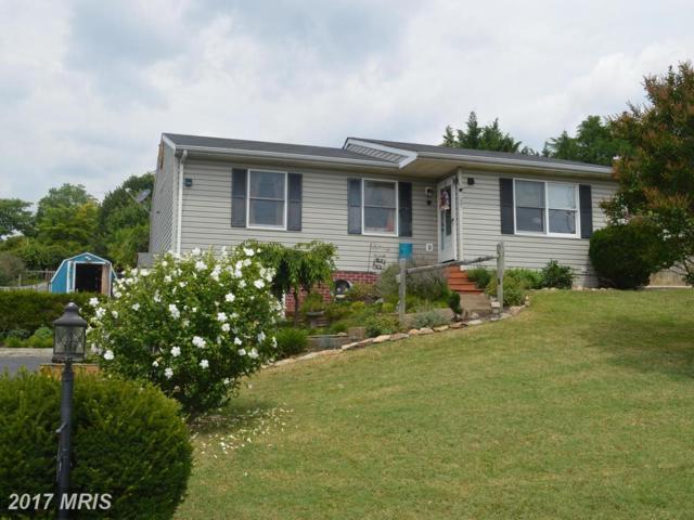 39 Little Sorrel Drive, Strasburg, VA 22657 (#SH10014430) :: Pearson Smith Realty