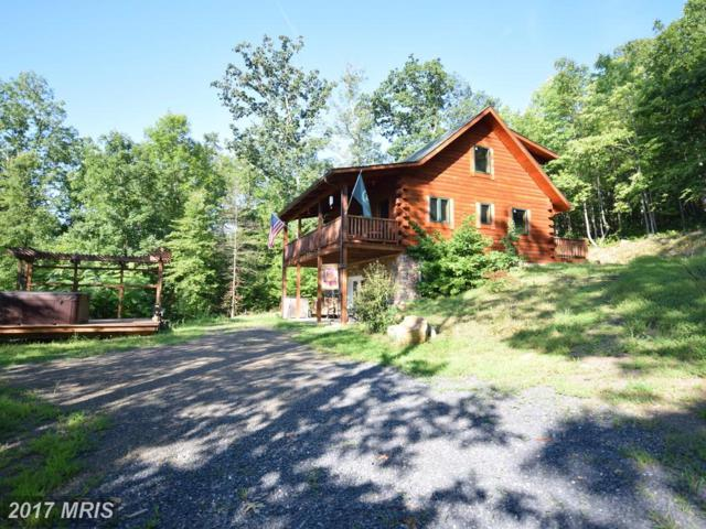 1651 Forest Ridge Trail, Fort Valley, VA 22652 (#SH10027271) :: Pearson Smith Realty