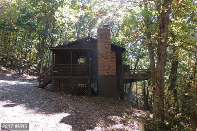 158 Cabin Lane, Mount Jackson, VA 22842 (#SH10032745) :: Pearson Smith Realty