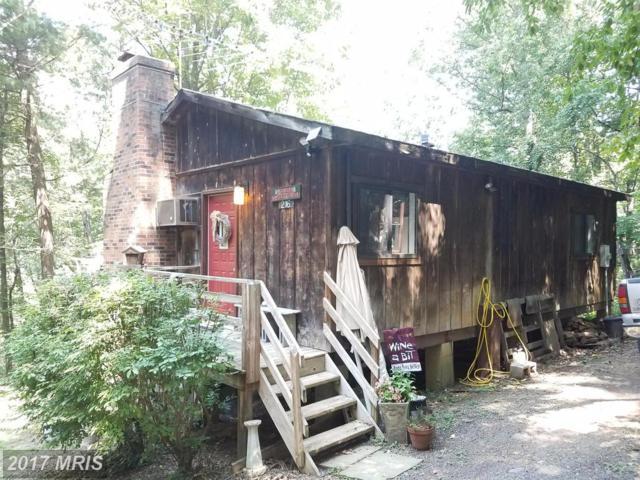 216 Cabin Lane, Mount Jackson, VA 22842 (#SH10034810) :: Pearson Smith Realty