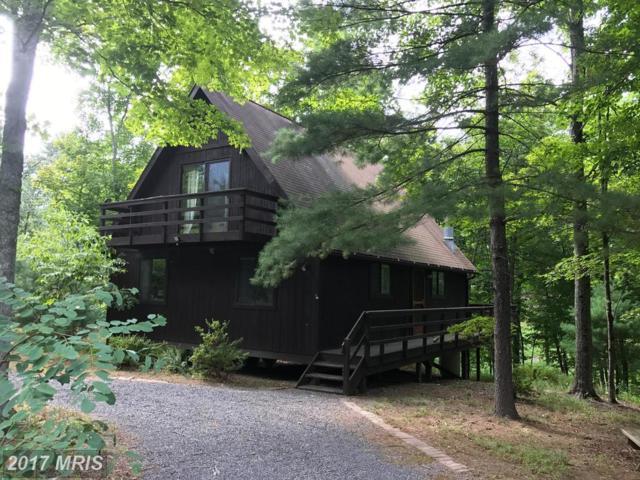 487 Timber Ridge Lane, Mount Jackson, VA 22842 (#SH10045534) :: LoCoMusings