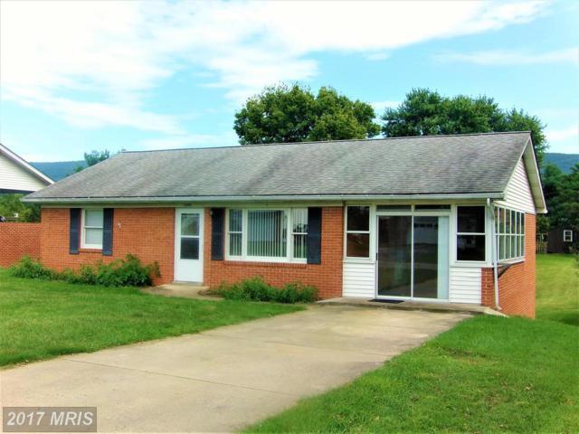 5080 Elm Drive, Mount Jackson, VA 22842 (#SH10057815) :: Pearson Smith Realty