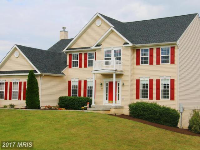 115 Savannah Drive, Strasburg, VA 22657 (#SH10058382) :: Pearson Smith Realty