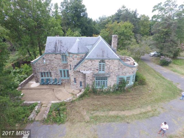 34686 Old Valley Pike, Strasburg, VA 22657 (#SH10059376) :: Pearson Smith Realty