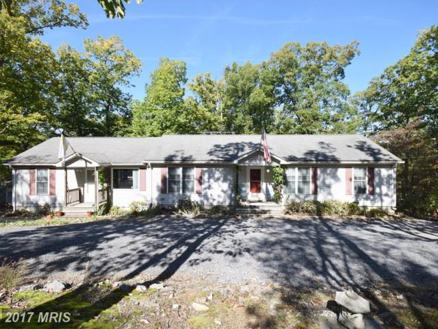 531 Walden Circle, Star Tannery, VA 22654 (#SH10087010) :: Dart Homes