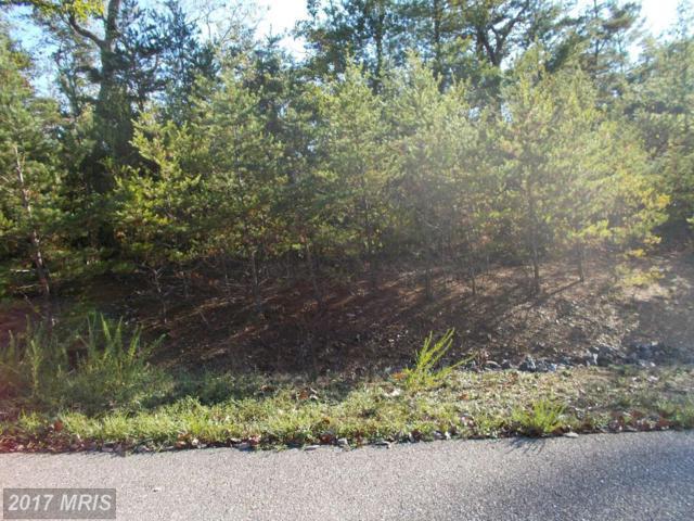 Falcon Haven Drive, Basye, VA 22844 (#SH10097956) :: Pearson Smith Realty