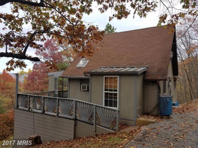 625 Cedar Road, Strasburg, VA 22657 (#SH10107055) :: The MD Home Team