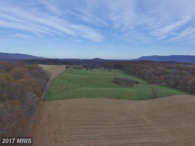 189 Harman Road, Maurertown, VA 22644 (#SH10107487) :: Blackwell Real Estate
