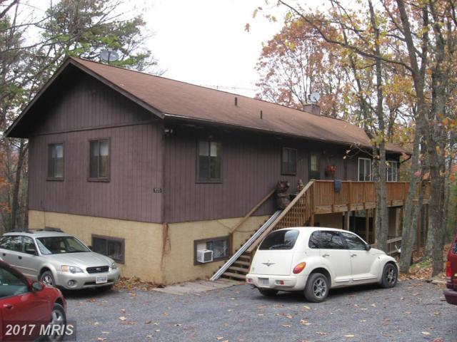 1135 Hepner Road, Mount Jackson, VA 22842 (#SH10108344) :: Pearson Smith Realty