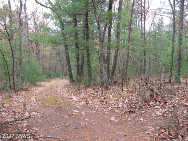 Hepner Road, Mount Jackson, VA 22842 (#SH10108376) :: Pearson Smith Realty