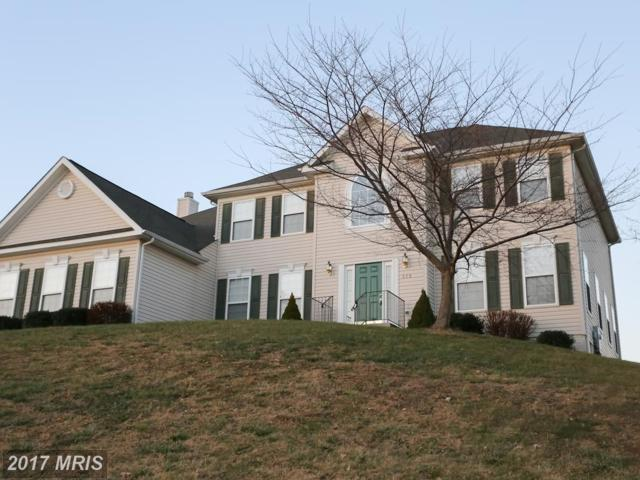 278 Waverly Drive, Strasburg, VA 22657 (#SH10122008) :: The Gus Anthony Team
