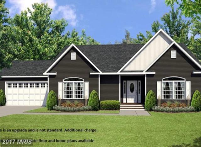 Clubhouse, Woodstock, VA 22664 (#SH10125106) :: Pearson Smith Realty