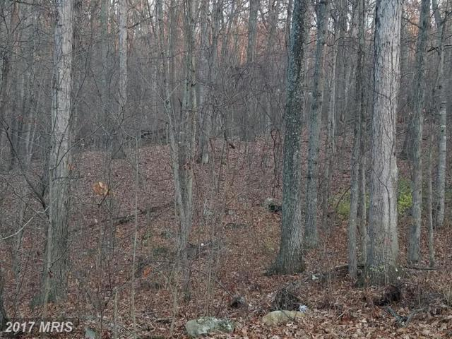Fleming Park Rd, Mount Jackson, VA 22842 (#SH10125383) :: Pearson Smith Realty