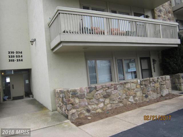 1836 Fairway Drive #202, Basye, VA 22810 (#SH10130007) :: Dart Homes