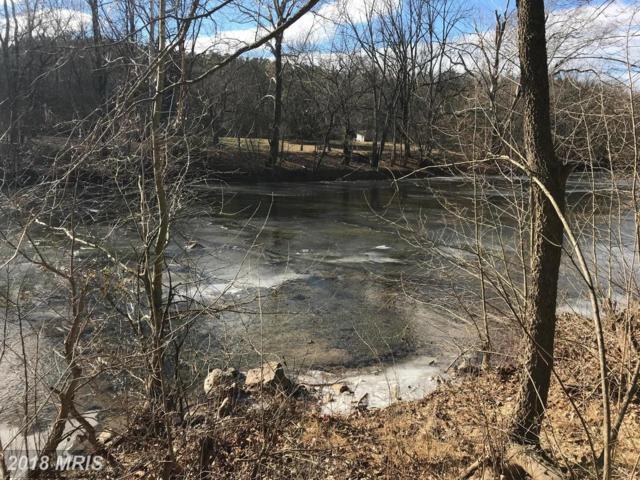 Indian Spring Road, Maurertown, VA 22644 (#SH10134572) :: Pearson Smith Realty