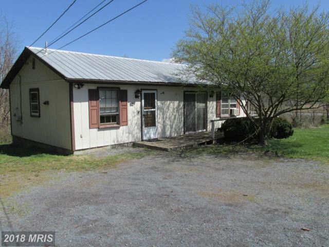 230 Hopewell Avenue, Mount Jackson, VA 22842 (#SH10136389) :: Pearson Smith Realty