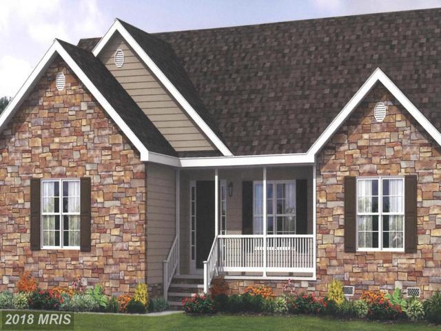 301 Stoneburner Road, Edinburg, VA 22824 (#SH10183098) :: Jacobs & Co. Real Estate