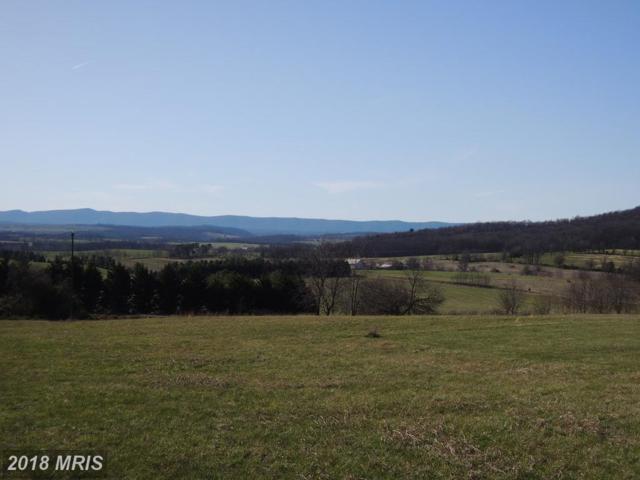 LOT 5-HF Pinewoods Road, Quicksburg, VA 22847 (#SH10196356) :: Green Tree Realty
