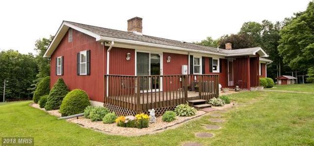 3229 Boliver Road, Fort Valley, VA 22652 (#SH10201274) :: Keller Williams Pat Hiban Real Estate Group