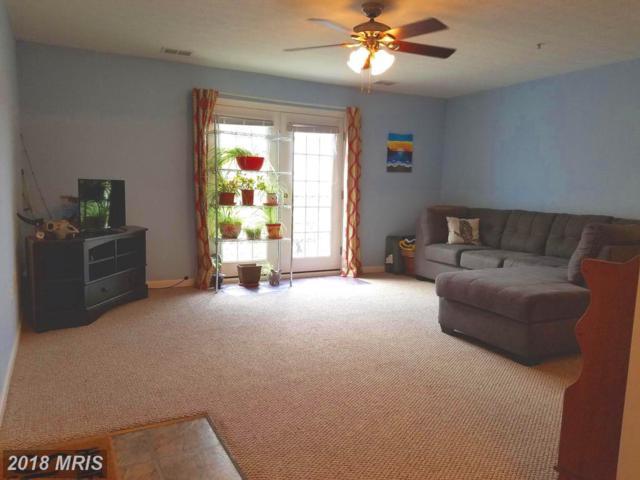 225 Brandy Court J-9, Strasburg, VA 22657 (#SH10204532) :: Dart Homes