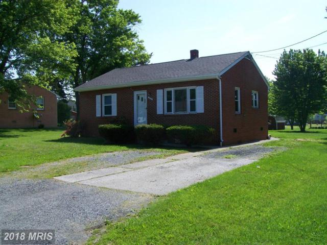 294 Crim Drive, Strasburg, VA 22657 (#SH10251321) :: The Withrow Group at Long & Foster